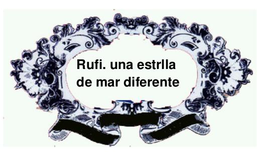 cuento: Rufi, una estrella de mar diferente - cabecera